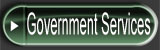 Government Services